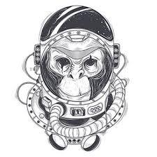 Monkey Vector Free Download Monkeys Monkey Cartoon Cute Monkey