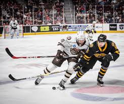P Bruins Fall To Hershey Bears 5 3 Providence Bruins
