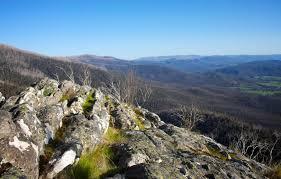 Dettagli webcam Yarra Valley