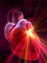 Портфолио проекта Сердце пламенный мотор ПримаВики 1264294462 heart attack jpg