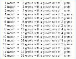 Crested Gecko Growth Chart This Gives You A General Idea