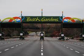 how much is busch garden tickets.  Much With How Much Is Busch Garden Tickets A