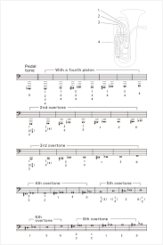 Tuba 4 Valve Finger Chart How To Play The Tuba Tuba Fingering Musical Instrument
