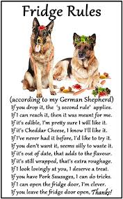 german shepherd dog gift fridge rules large fun flexible fridge magnet size 16cms x 10 cms approx 6 x4 amazon co uk kitchen home