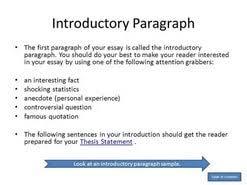 word essay format  500 word essay format