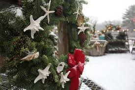 Falmouth Ma Christmas Tree Lighting Cape Cod Christmas Holiday Events Attractions On Cape Cod