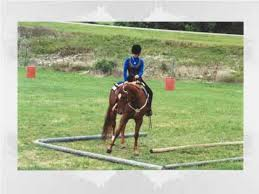 4 H Horsemanship Skills Youtube