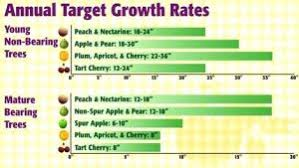 Moonglow Pear Pollination Chart 28 Paradigmatic Fruit Tree Pollinators Chart