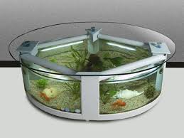 the extraordinary digital photography below is part of fish tank coffee table content which is classified within glass tables and published at Октябрь