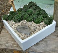 garden ideas deluxe succulent rock design for in how to plant succulents indoors diy cool plants making front rockery ways caring outdoors indoor rock garden ideas u74 garden