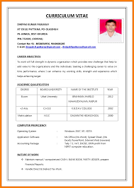 how to make a cv for first job monthly budget forms how to make a cv for first
