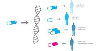 precision medicine. patients different reactions to drugs precision medicine n