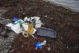 Bilderesultat for søppel fjæra