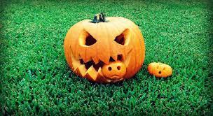 Cool Pumpkin Faces Pumpkin Idea 4 Pumpkin Eating Pumpkin Youtube