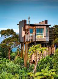luxurious tree house. Hapuku Lodge And Tree Houses - New Zealand, Offers August Seal Pup Experience Luxurious House E