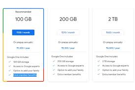 Google One India Plans & Prices You Can Check Out as Photos' Free Unlimited Storage Will End Soon