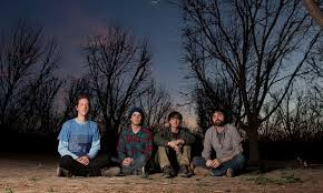 <b>Animal Collective</b> Albums, Songs - Discography - Album of The Year