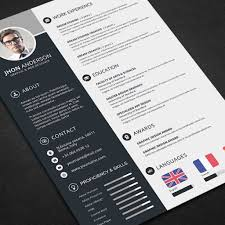 Professional Resume Template Download Free Picture Ideas References