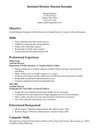 Resume Ideas For Skills
