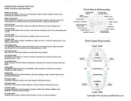 Tooth Meridian Chart Interactive Tooth Chart Long Island Holistic Dentist
