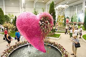 Bildergebnis für foto Blumenmesse