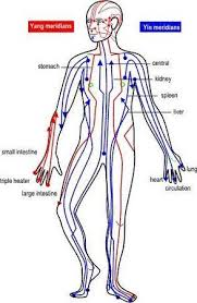 Chart Of The Yin And Yang Meridians Acupressure