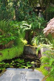 Small Picture Tropical garden ideas landscape eclectic with stone path fern grotto