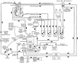 cardiopulmonary bypass circuitry and cannulation techniques on simple blender wiring diagram