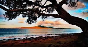 Natural framing photography Photography Sunset Naturalframetree Digital Photo Mentor Create Strong Photographic Composition Using Framing