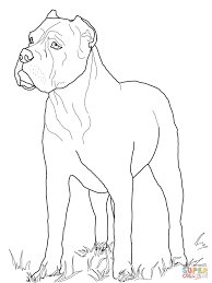 Small Picture Rottweiler Coloring Pages Virtrencom
