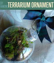 how to make a hanging terrarium ornament diy terrarium