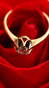Gold Ring Diamond Red Rose 750x1334 Iphone 8766s