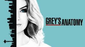 Greys Anatomy Tackles Domestic Violence Petsempower