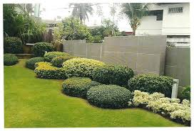 Small Picture Garden Design Garden Design with Flowering and Evergreen Shrubs