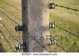 barbed wire fence concentration camp. Detail Of Electrified Barbed Wire Fence Separating The Sections Auschwitz-Birkenau Concentration Camp, Oswiecim, Malopolska, Poland Camp N