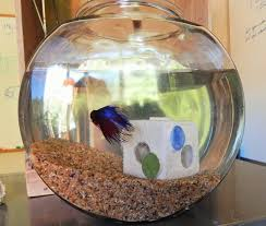 Betta Art Decorative Fish Bowl Cool looking Aquarium Decoration fish tank decoration fish bowl 5
