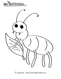 beetle animal coloring pages inspiring bugcts to print out free bugs beautiful insects for kids