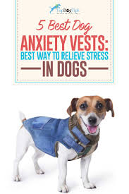 helping dogs with anxiety. Plain With Top Best Dog Anxiety Vests To Relieve Stress In Dogs On Helping With