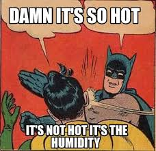 Image result for humidity memes