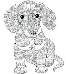 Animal Mandala Coloring Pages Animal Mandala Coloring Pages In