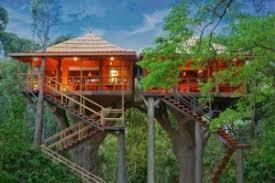 tree house resort. 1. Ranger Wood Nature Castle Machan Tree House Resort I