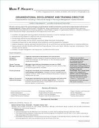 Travel Agent Resume Stunning Customer Service Representative In Travel Agency Find Your World