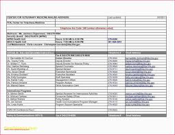 resume template mit