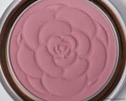 sweet pea flower beauty flower pots blush