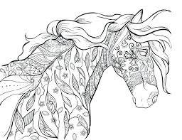 coloring book horse horse head