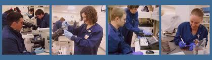 Montana University System's Medical Laboratory Sciences - Medical ...
