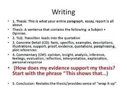 commentary example in essays grade writing process social  commentary