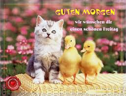 Guten Morgen Schönen Freitag Günthers Sprüche