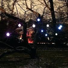 lighting outdoor trees. Solar Tree Lights For The Garden Outdoor Trees Islands . Lighting