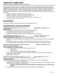 Law School Resume Examples